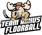 Team Arhus