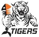 FK Tigers Jizni Mesto (CZE)
